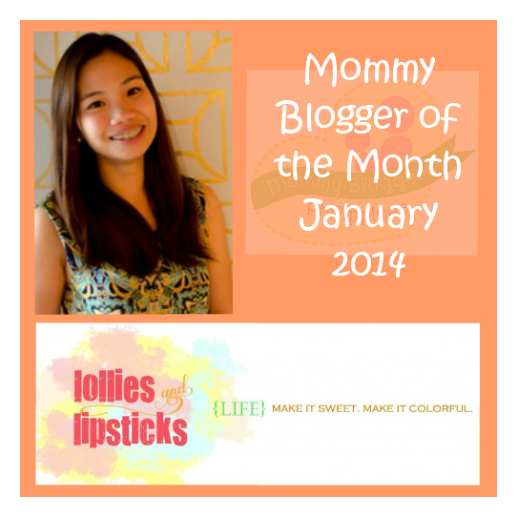Blogger of the month - Jan 2014