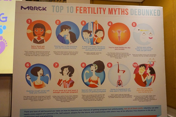 A big wall listing the top fertility myths and descriptions if they are true or just fallacies.
